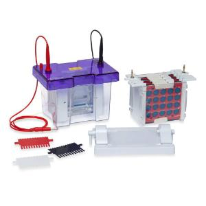 Electro-blotting systems, omnipage mini